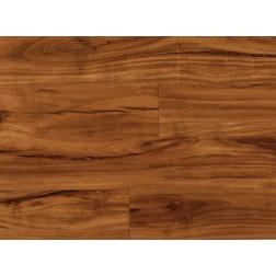 """COREtec Plus 5"""" Gold Coast Acacia 5x48 Vinyl Planks - US Floors"""