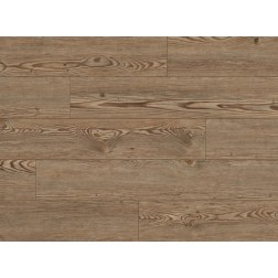 "COREtec Plus 5"" Corvallis Pine 5x48 Vinyl Planks - US Floors"