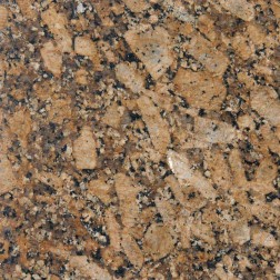 M S International - Natural Stone Pre Fabricated Giallo Fiorito Polished 2 Cm Pre Fabricated
